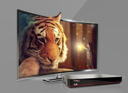 The Leader in HD TV - NAMPA, Idaho - Advantage Satellite - DISH Authorized Retailer